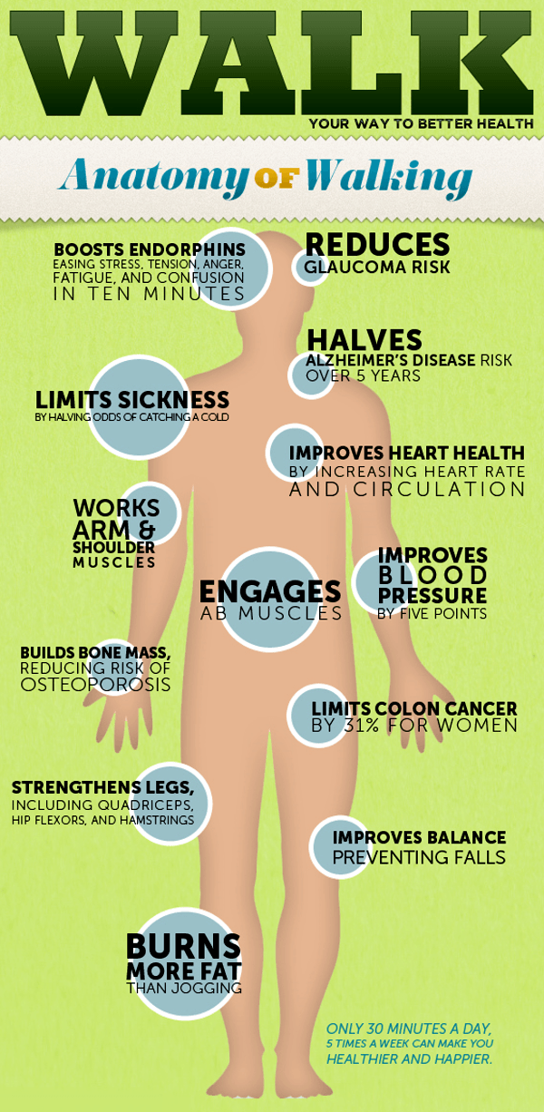 Benefits of Regular Physical Activity